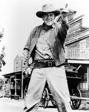 This is an image of 187072 James Arness Photograph & Poster