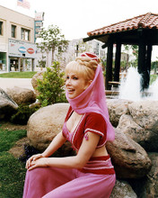 This is an image of 274003 Barbara Eden Photograph & Poster