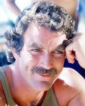 This is an image of 277961 Tom Selleck Photograph & Poster