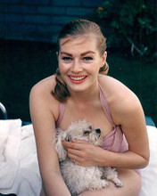 This is an image of 280036 Anita Ekberg Photograph & Poster