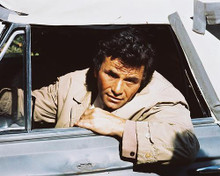This is an image of 216869 Peter Falk Photograph & Poster