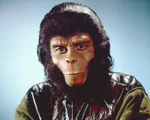 This is an image of 221221 Planet of the Apes Photograph & Poster