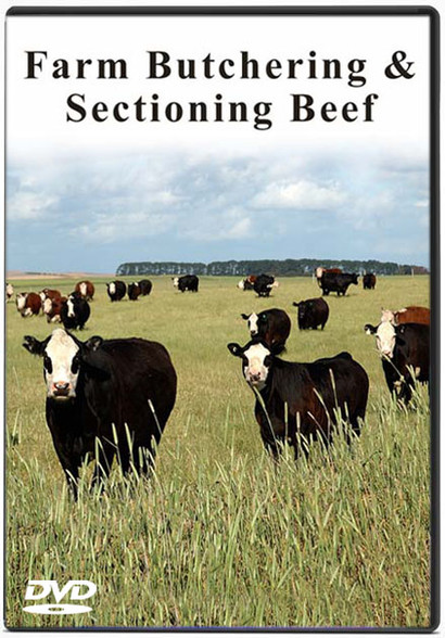 FARM BUTCHERING & SECTIONING BEEF