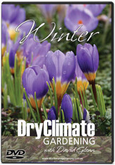 DRY CLIMATE GARDENING with David Glenn  - Winter