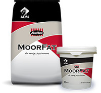 "MoorFat can be used to enhance condition and performance of exhibitionswine, sheep, and goats. Components of MoorFat yield a smooth, well-defined body condition along with healthy skin and a glossy hair coat. Long-term feeding (at least 30 to 60 days) of MoorFat may provide a more preferred ""finish"" in exhibition livestock that are too lean in body composition. MoorFat can be used to conveniently increase energy levels when feed intake is depressed during stress or hot weather to keep show animals growing and/or performing at their peak. MoorFat is an energy supplement comprised of animal fat encapsulated in a milk protein carrier in powder form; available in 20 lb pails and 50 lb bags."