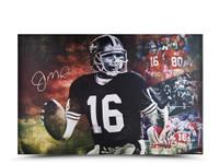 "JOE MONTANA Autographed ""Cool Joe"" 36 x 24 UDA LE 50"