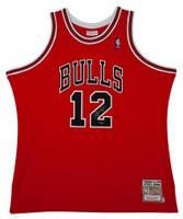 12d13c794676 MICHAEL JORDAN Signed Bulls Mitchell   Ness  12 Authentic 1990 Jersey UDA