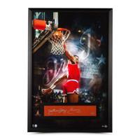 """JULIUS ERVING """"Dr. J"""" Philadelphia 76ers Autographed 28 x 40 Framed Display UDA LE 6"""