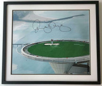 "RORY McIlroy Autographed ""Tee Shot From The Tower"" Framed Photograph UDA"