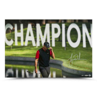 "TIGER WOODS Autographed ""The Tie"" 24"" x 16"" Photograph UDA LE 82"