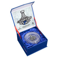 ST. LOUIS BLUES 2019 NHL Stanley Cup Champions Crystal Puck FANATICS