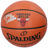 COBY WHITE Autographed Chicago Bulls Logo Spalding Basketball FANATICS