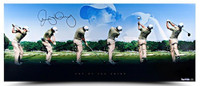 """RORY McIlroy Hand Signed """"Art of The Swing"""" Panoramic Photo UDA LE 250"""
