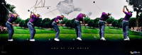 """TIGER WOODS Signed """"Art of the Swing"""" Panoramic LE 250 UDA"""