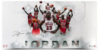 "MICHAEL JORDAN Signed ""Jersey Collage"" 36 x 18 Photo UDA LE 123"