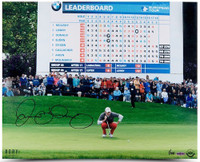 "RORY MCILROY Hand Signed 16 x 20 ""Scoreboard"" Photograph UDA LE 100"