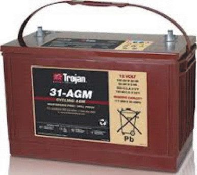 The 31-AGM battery is ideal for a small solar system. *Price includes core charge. **Minimum Order of 4.