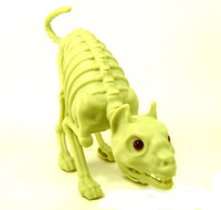 CAT SKELETON Bones Lights Sound Halloween Decor Party Decoration Accessories bcg