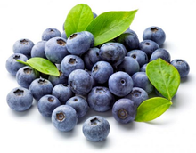 OMG Blueberry E Liquid