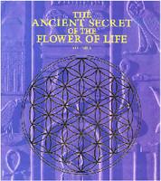 The Ancient Secret of the Flower of Life Vol 1 (5176)