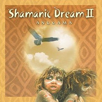 Shamanic Dream 2 CD (1333648718)