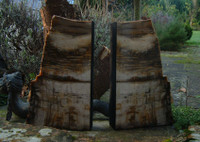 Petrified Wood Book Ends reduced (9705)