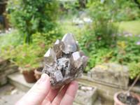 Smokey quartz with Chlorite cluster (111842)