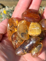 Amber polished pieces (116055)