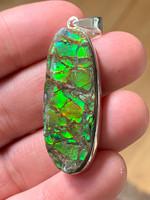 Ammolite set in silver (118054)