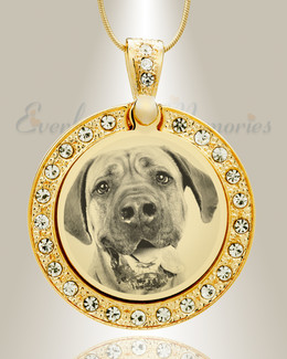 Gem Circle Photo Engraved Gold Plated over Stainless Pet Keepsake