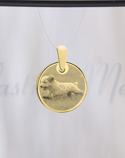 Round Photo Engraved Gold Plated over Stainless Pet Guardian