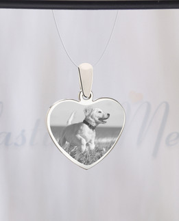 Heart Photo Engraved Stainless Pet Guardian