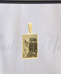 Rectangle Photo Engraved Gold Plated over Stainless Pet Guardian