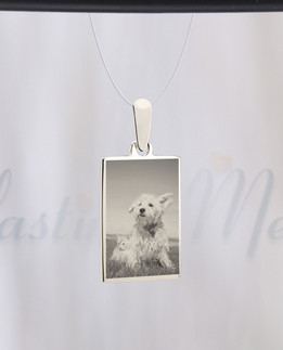 Rectangle Photo Engraved Stainless Pet Guardian