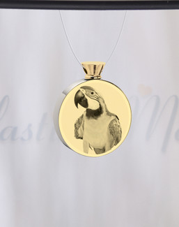Round Gold Plated Picture Engraved Pet Ash Guardian