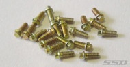 SSD SSD00028 M2 Scale Hex Bolts