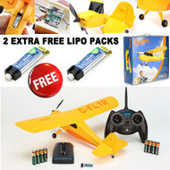 Hobbyzone HBZ4900 Champ RTF 2.4GHz RC Airplane w/ TWO EXTRA FREE LIPO PACKS