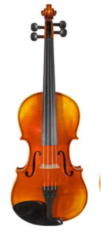 Core Academy Intermediate Student Violin