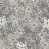 Shell Rummel Quiet Moments PWSR009 Urchin Mother Of Pearl Cotton Fabric By Yd