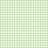 Tanya Whelan PWTW145 Charlotte Check Green Cotton Quilting Fabric By Yd