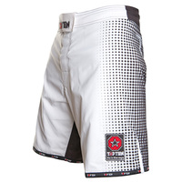 "TOP TEN MMA Shorts ""GRADIENT"""