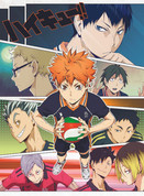 Haikyuu!! Wall Scroll