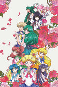 Sailor Moon Crystal Wall Scroll