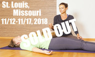 *SOLD OUT* VSA Singing Bowl Vibrational Sound Therapy Certification Course St Louis MO November 12 - 17, 2018