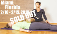 **SOLD OUT** VSA Singing Bowl Vibrational Sound Therapy Certification Course Miami FL 2/10 - 2/15, 2019
