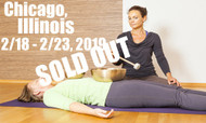 **SOLD OUT** VSA Singing Bowl Vibrational Sound Therapy Certification Course Chicago, Il February 18-23, 2019