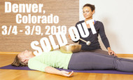 **SOLD OUT** VSA Singing Bowl Vibrational Sound Therapy Certification Course Denver, Co March 4-9, 2019
