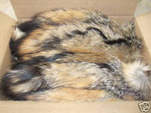 Lot of 50 Natural American Gray  Fox Fur tails12''-15''