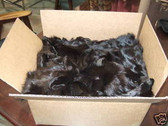 Lot of 50 Dyed Brown  Fox Fur  faces.No reserve.