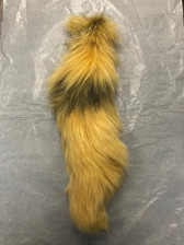 Dyed Canary Yellow Platinum Fox Tail